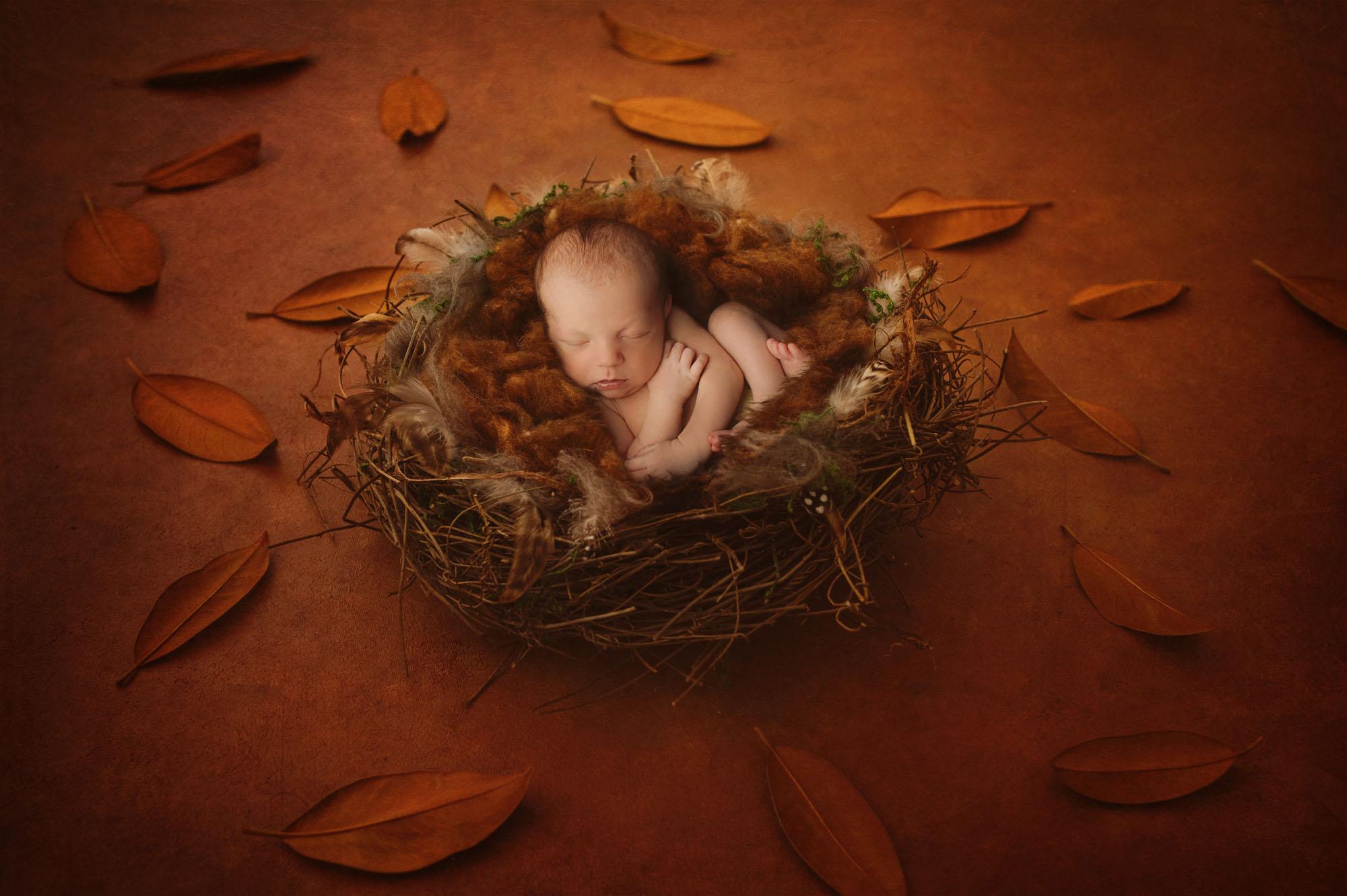 Servizi fotografici gravidanza neonati