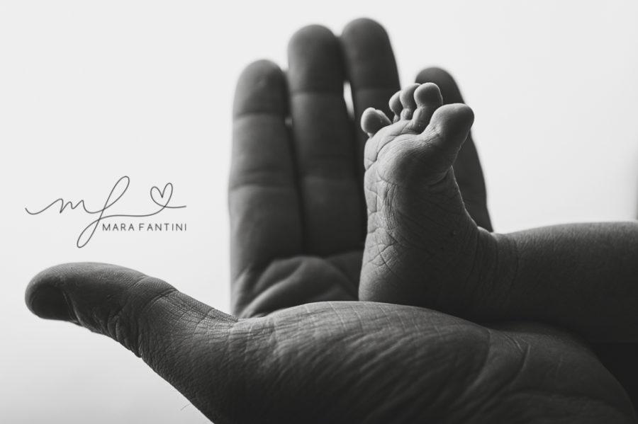 servizio fotografico neonato gravidanza  famiglia roma mara fantini